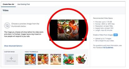 Facebook広告 動画 テキスト2