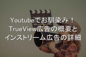 Trueview広告,インストリーム広告