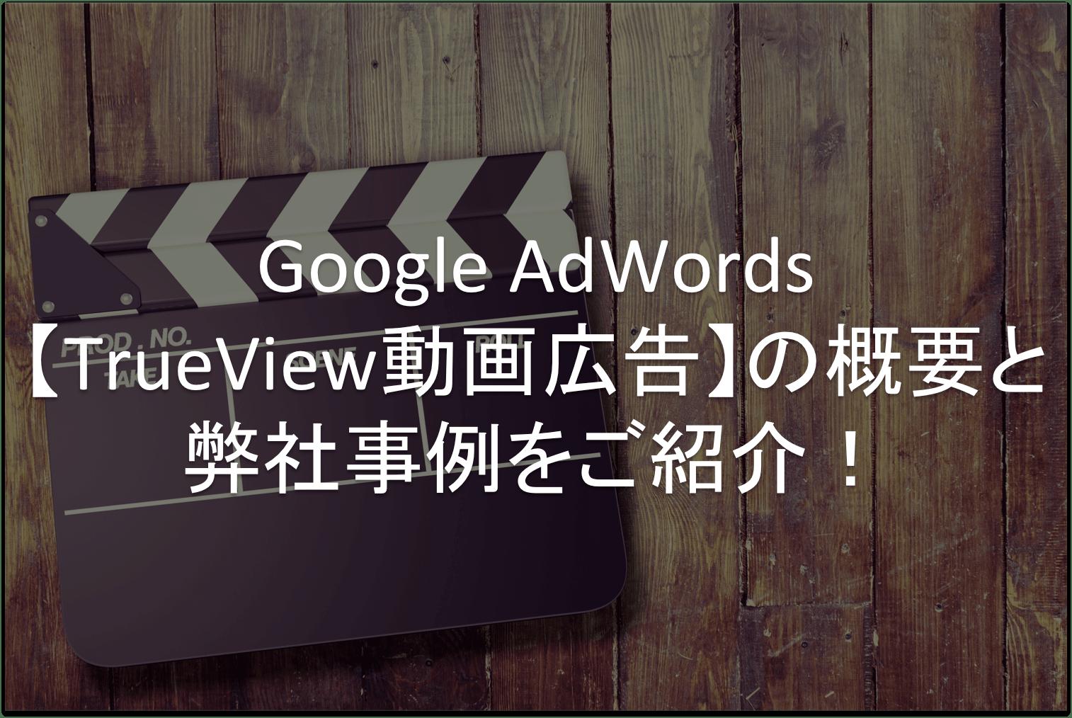 Google AdWords,動画